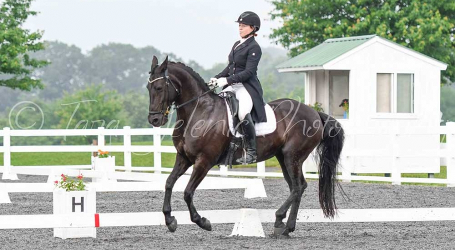 Fwd-Dressage-Festival-Photos image006