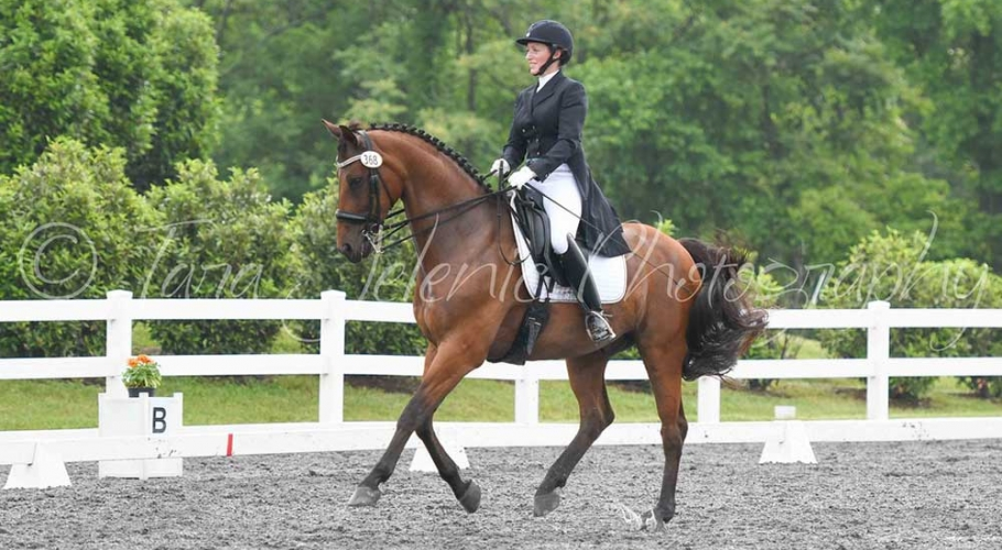 Fwd-Dressage-Festival-Photos image002